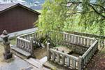 面沼神社のお茗荷祭り